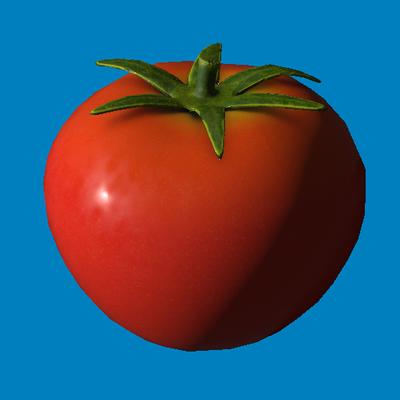 DIWide Logo